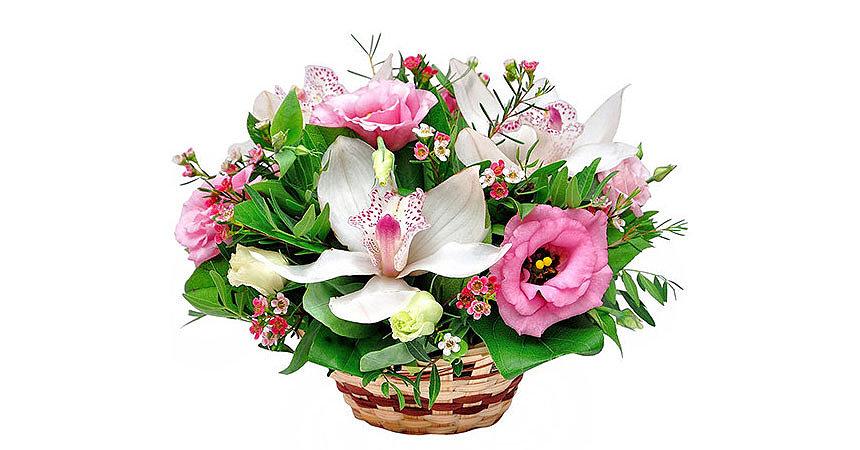 Оригинальные букеты цветов: интересные идеи подарков
