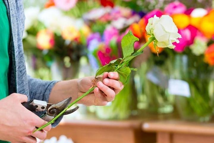 Свежие срезанные цветы – особенности выбора и ухода за букетом