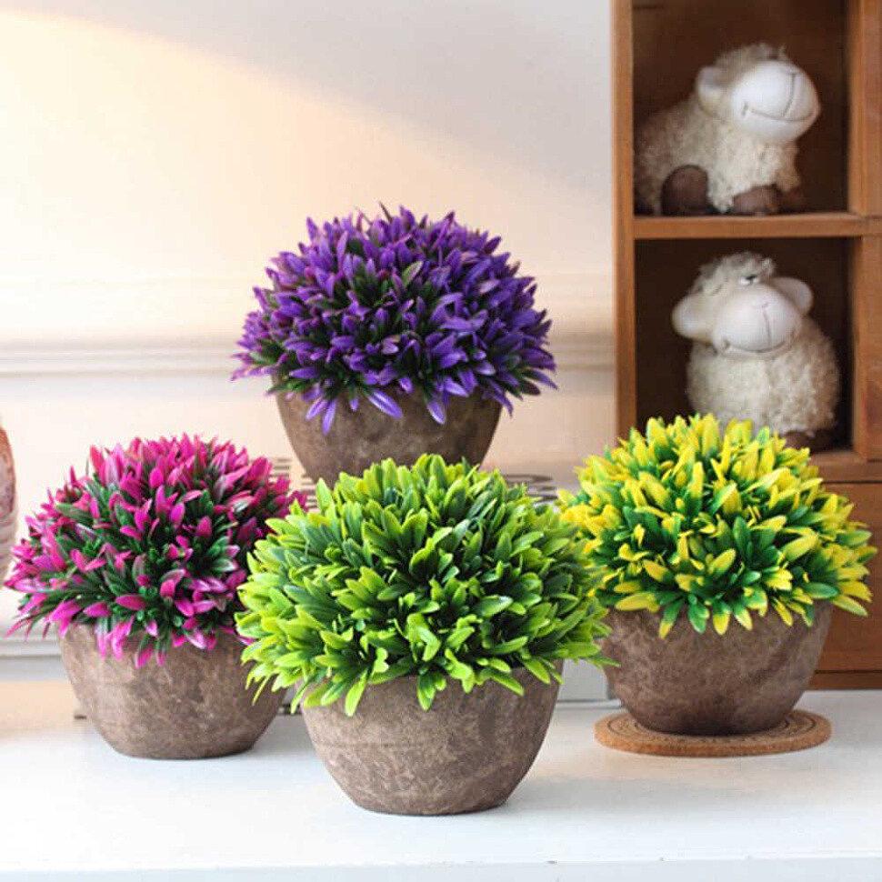 Полезные и красивые горшечные растения для дома